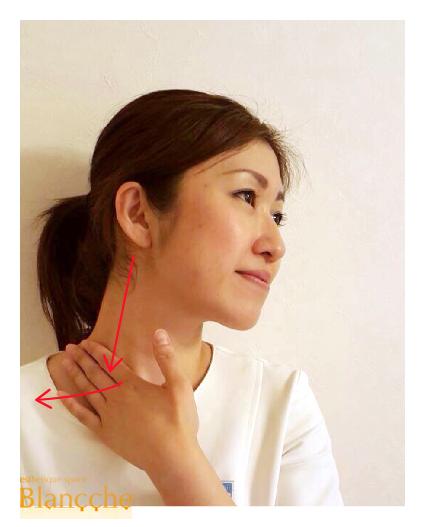 皮膚割線4_1