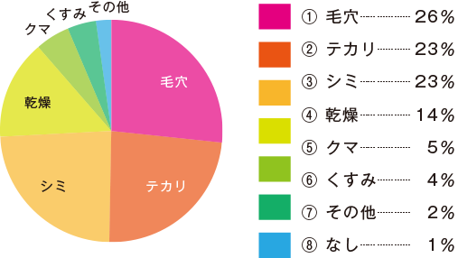 夏の3大肌悩み_円グラフ